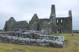 49. Clontuskert Priory, Co. Galway