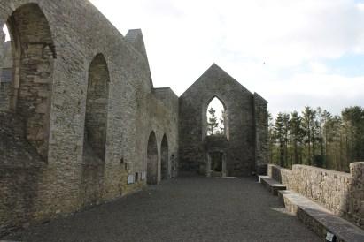 11. Aghaboe Abbey, Co. Laois