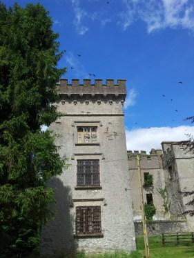 11. Donadea Castle, Co. Kildare
