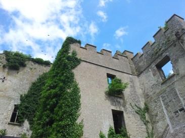 17. Donadea Castle, Co. Kildare