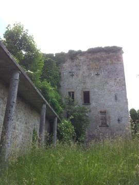 20. Donadea Castle, Co. Kildare