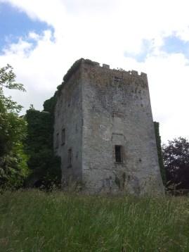 23. Donadea Castle, Co. Kildare