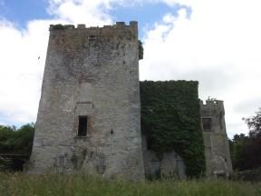 26. Donadea Castle, Co. Kildare