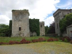 30. Donadea Castle, Co. Kildare