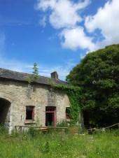 31. Donadea Castle, Co. Kildare