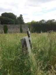 39. Donadea Castle, Co. Kildare