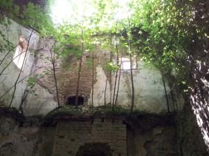 50. Donadea Castle, Co. Kildare