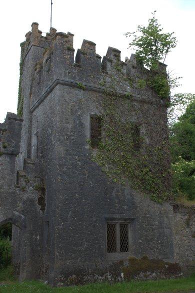 53,. Donadea Castle, Co. Kildare
