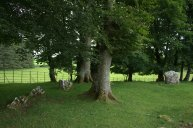 10. Glebe Stone Circle, Co. Mayo