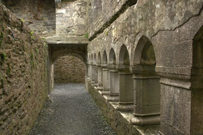 28. Ross Errilly Friary, Co. Galway