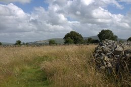 04. Rathgall Hillfort, Co. Wicklow