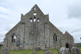 02. St. Mary's Collegiate Church, Co. Kilkenny