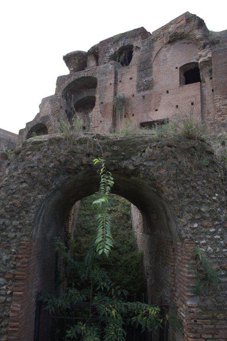 25. Palatine Hill, Rome, Italy