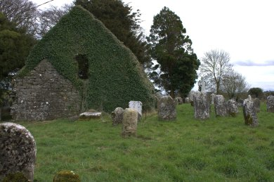 10. Kilmanaghan Church, Co. Offaly