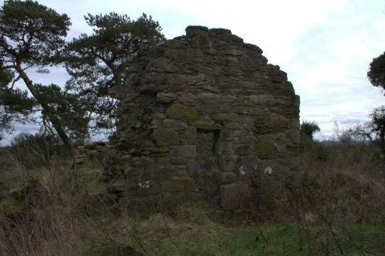 24. Lemanaghan Ecclesiastical Site, Co. Offaly