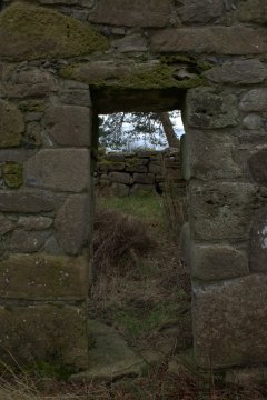 25. Lemanaghan Ecclesiastical Site, Co. Offaly