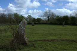 03. Knappogue Standing Stones, Co. Clare