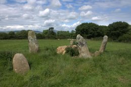 07. Robinstown Great Stone Circle, Co. Wexford