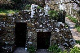 03. Temple Dysert, Waterford, Ireland