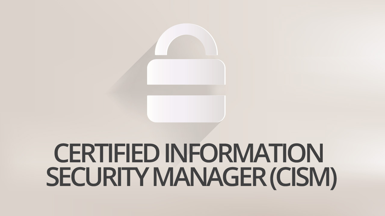 Information Systems Security Manager