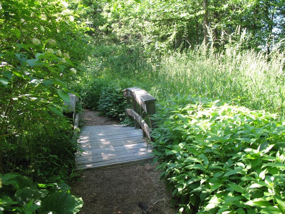 "Eloise Butler Wildflower Garden Photo by <a href=""https://flic.kr/p/2bNi1i"" target=""_blank"">jpellgen/flickr</a>"