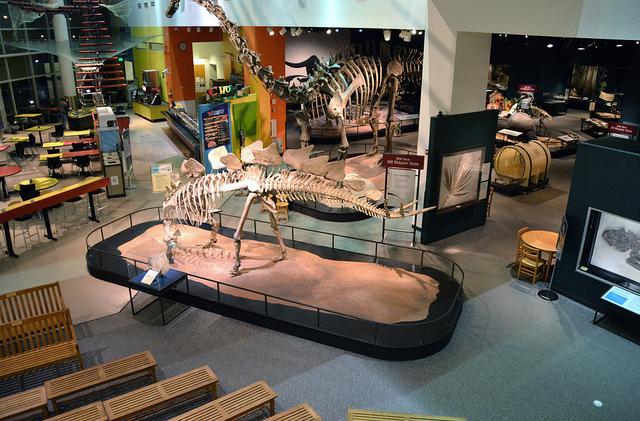 "Science Museum of Minnesota. Image by <a href=""https://flic.kr/p/eanq4a"" target=""_blank""> jpellgen/flickr</a>"