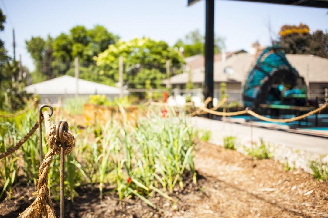 Tiny Diner garden. Image by TJ Turner/Greenspring Media