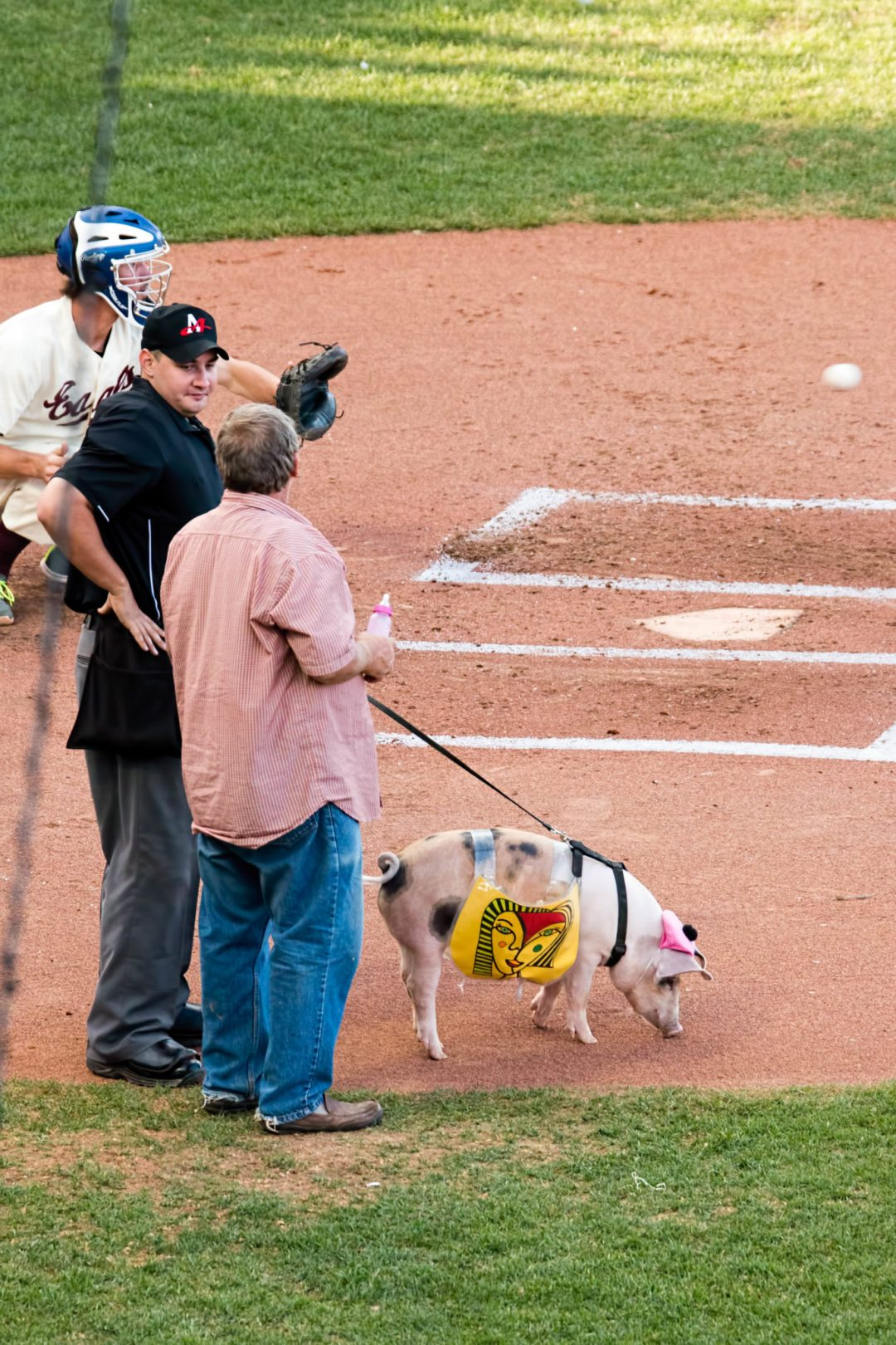 "St. Paul Saints' Mascot. Image by <a href=""https://flic.kr/p/w3jGC4"" target=""_blank"">evilfoo/flickr</a>"