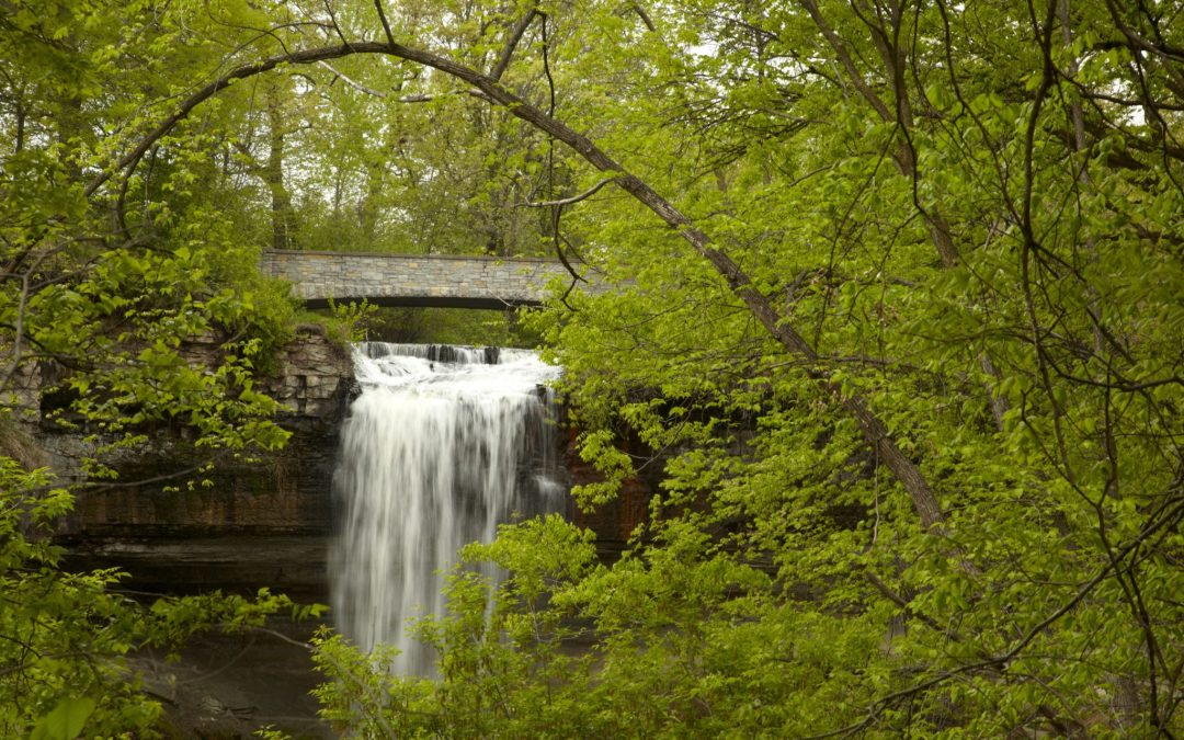 Nature-Centric Parks