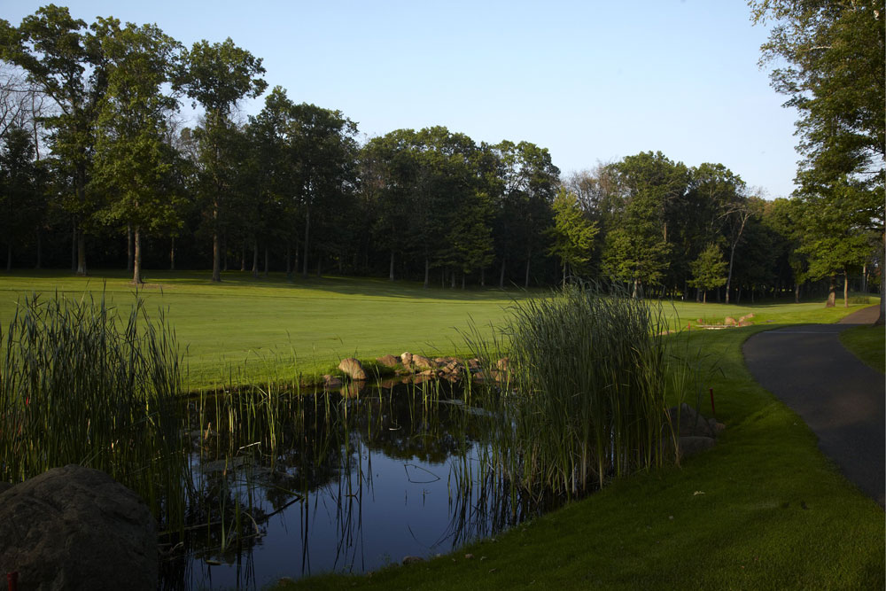 An image of a pond in the foreground, and a tree-lined fairway in the background at Rush Creek Golf Club.