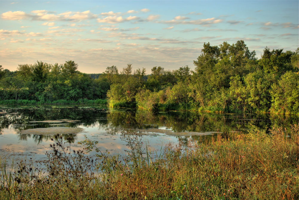 A pond surrounded by forest at the Minnesota Valley National Wildlife Refuge.