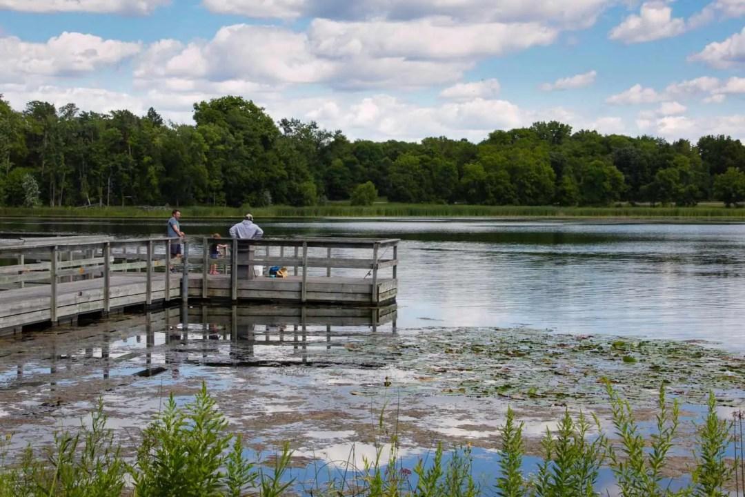 Hyland Lake Park Reserve