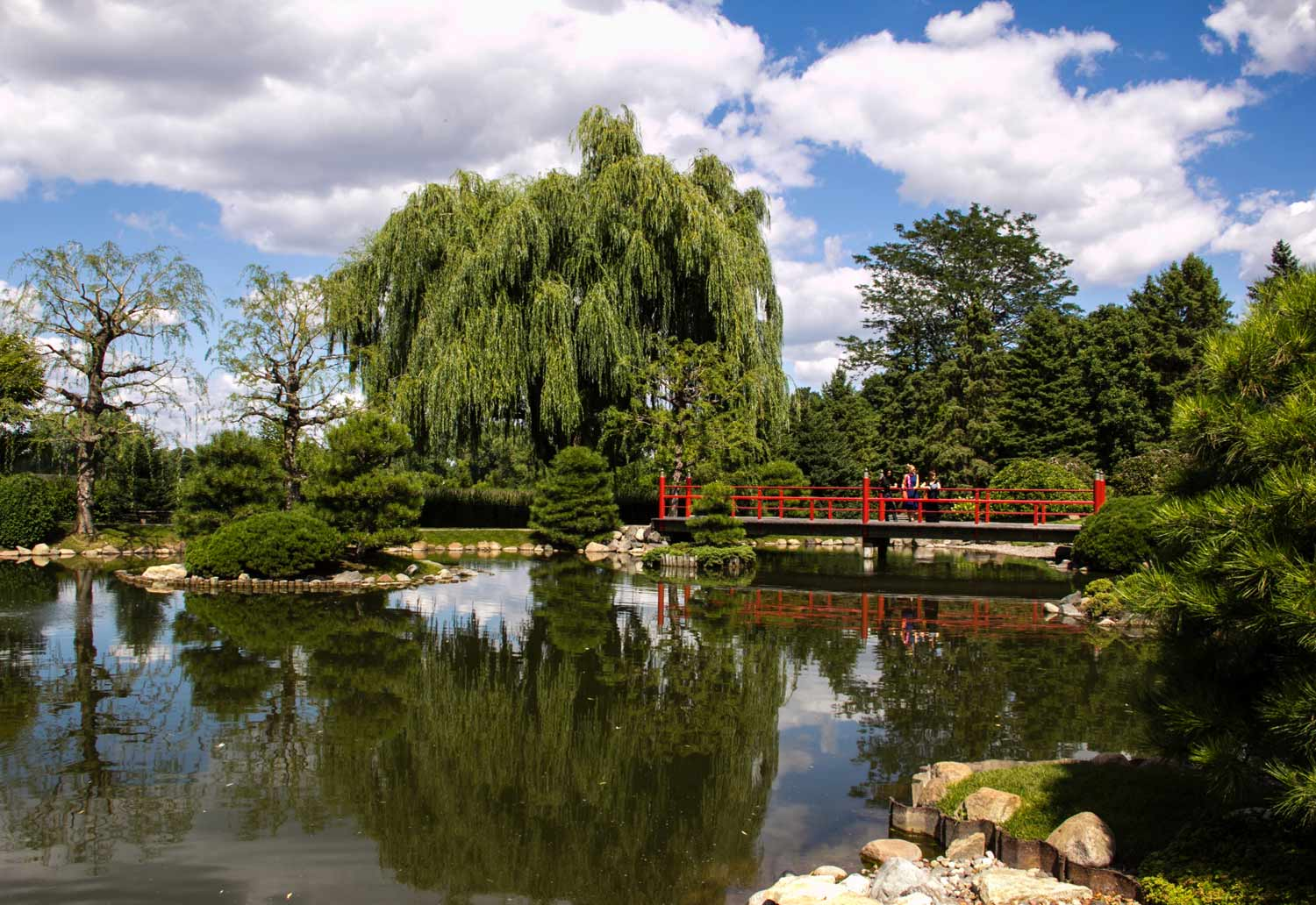 Normandale Japanese Garden Pond - Visit Twin Cities