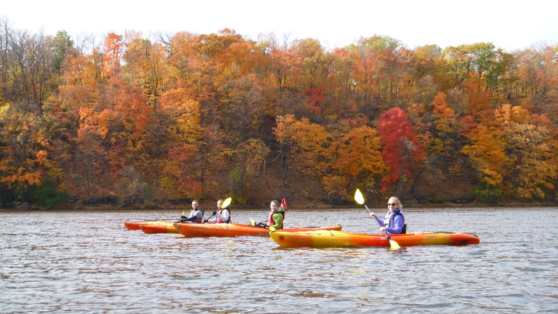 Mississippi River kayakers in front of beautiful fall foliage