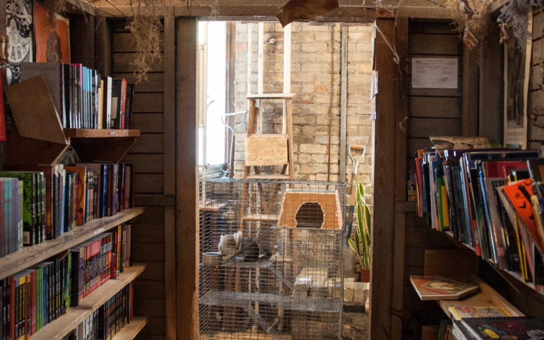 Unique Independent Bookstores
