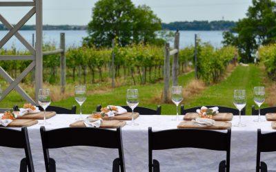 Waconia Winery Tour