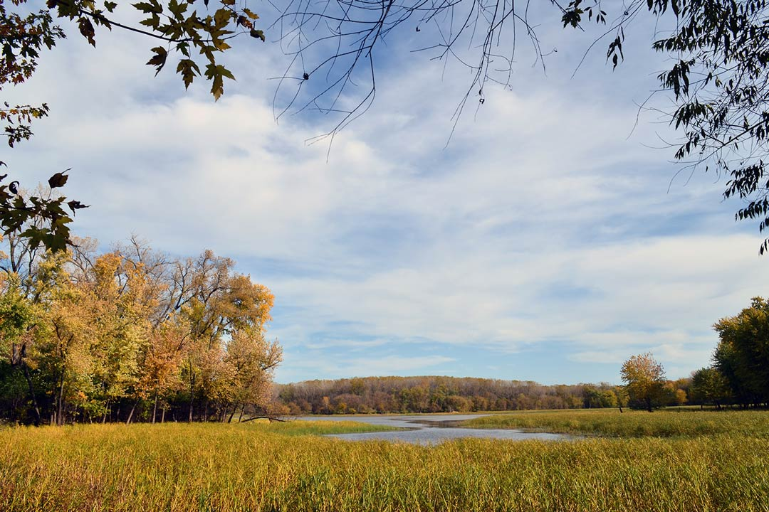A pond and trees during fall at the Minnesota Valley National Wildlife Refuge.