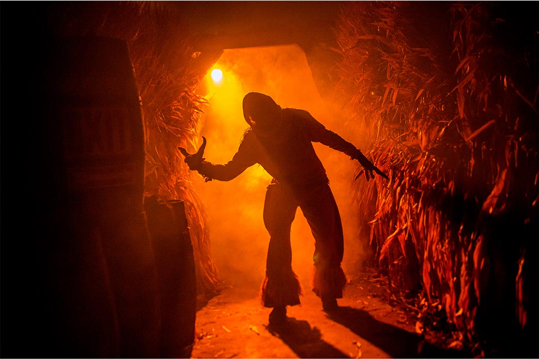 A zombie scarecrow in a corn maze at ValleySCARE, one of the the many haunted houses in the Twin Cities.