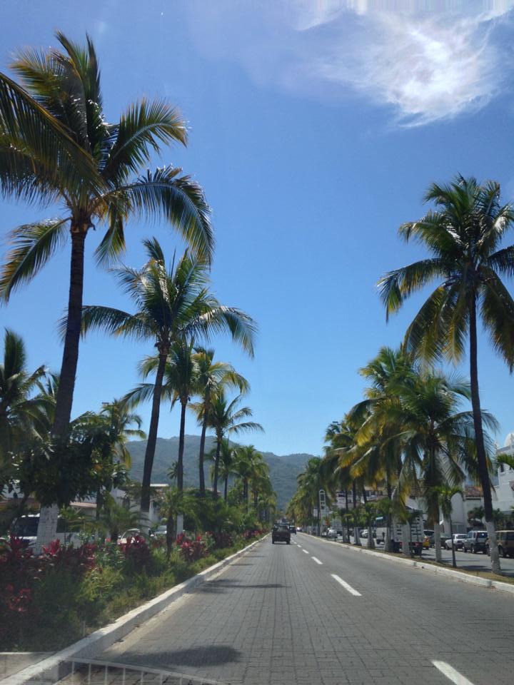 Hotel Zone: Ave Francisco Medina Ascencio in Puerto Vallarta Mexico Hotel Zone