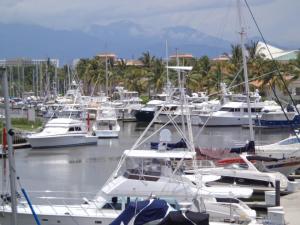 Nuevo Vallarta / Flamants: Marina à Nuevo Vallarta au Mexique