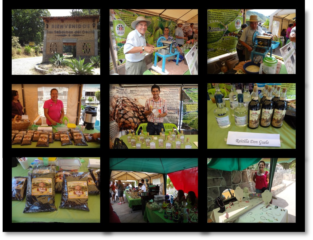Raicilla and Coffee Festival 2014