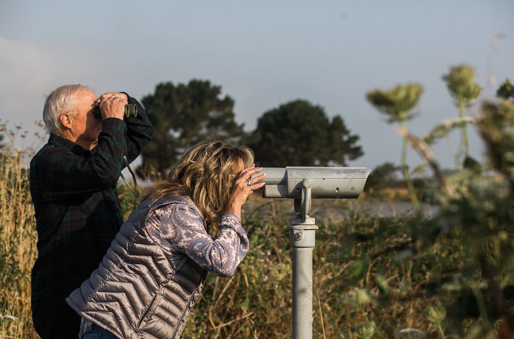 3 Places to Go Birdwatching