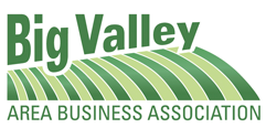 Image result for big valley business association