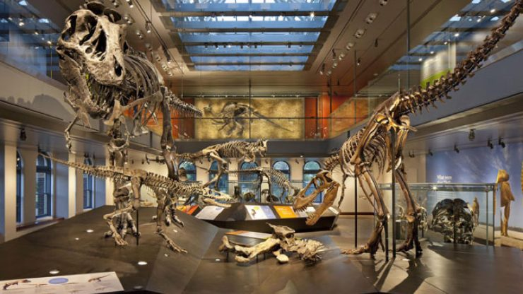 La Brea Tar Pits Museum - Hidden Gems of Los Angeles