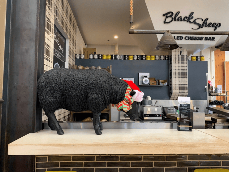 Black Sheep Grilled Cheese Bar in the Anaheim Packing House