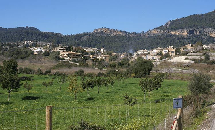 Es Capdella. Ruta 1 senderismo Calvià a Es Capdellà
