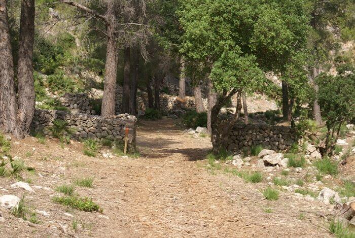Ruta de Calvià a Ses Sinies