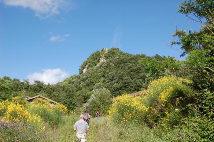 Rocca Silvana-Castell'Azzara-Toscana-Italy