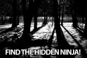 FindTheNinja