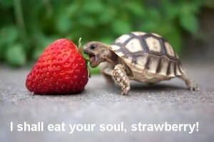 TurtleStrawberryTalking